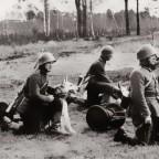 O wiernym do końca psie z Bitwy nad Bzurą 1939
